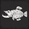 Grunge vector design template of  tropical fish skelet Royalty Free Stock Photo