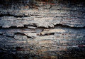 Grunge wall abstract the old for background Royalty Free Stock Images