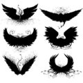 Grunge wing silhouette Stock Images