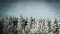 Grunge winter background Royalty Free Stock Photo
