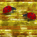 Grunge wooden background with ladybirds Royalty Free Stock Photo