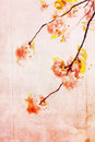 Grungy background with cherry blossom vertical Stock Image