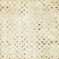 Grungy Beige Brown Spotted Tex...