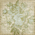 Grungy brown vintage floral texture background Royalty Free Stock Photo