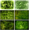 Grungy Green Backgrounds Royalty Free Stock Image