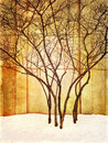 Grungy image of trees in snow Royalty Free Stock Photo