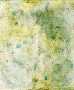 Grungy mouldy background Royalty Free Stock Photo