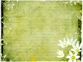 Grungy postcard with floral elements Stock Photos