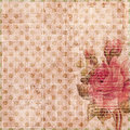 Grungy shabby spotted background with rose Stock Image