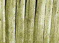 Grungy yellow wooden fence texture. Royalty Free Stock Photo