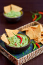 Guacamole and nachos with chili peppers Stock Photography