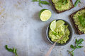Guacamole and rye toasts on rustic  background Royalty Free Stock Photo