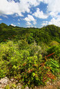 Guajataca Forest Reserve - Pue...
