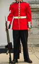 Guard at Attention - Uniform/Bodyshot Royalty Free Stock Photography