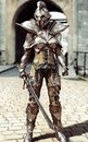 Guardian of the gate. Female fully armored knight standing guard.