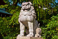Guardian lion Royalty Free Stock Photo