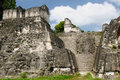 Guatemala mayan ruins in the jungle in tikal the picture presents acropolis del norte Stock Photography