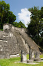 Guatemala mayan ruins jungle tikal picture presents acropolis del norte Royalty Free Stock Image