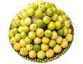 Guava beautiful colorful picture ingeniously arranged in a container and exposed on white background Stock Photos