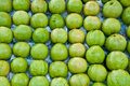 The Guava fruit Royalty Free Stock Photos
