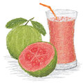 Guava fruit juice Royalty Free Stock Images