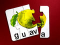 Guava fruit in puzzle Royalty Free Stock Photo