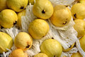 Guava in yellow stack of raw and with package shown as raw fresh and healthy fruit or agriculture concept Royalty Free Stock Photography