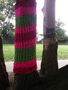 Guerrilla knitting on tree colorful trees in park Royalty Free Stock Photos