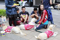 Guide dog there are many dogs in taipei city taiwan Royalty Free Stock Photo