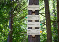 Guidepost Royalty Free Stock Photo