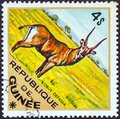 GUINEA - CIRCA 1975: A stamp printed in Guinea from the `Wild Animals` issue shows a Defassa Waterbuck Kobus defassa Royalty Free Stock Photo