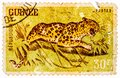 Stamp printed in Guinea from the Wild Animals issue shows a Leopard Panthera pardus Royalty Free Stock Photo