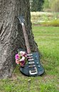 Guitar and flowers Royalty Free Stock Image
