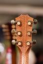 Guitar fretboard. Royalty Free Stock Photo