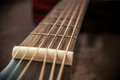 Guitar frets and strings Royalty Free Stock Photo