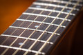 Guitar neck abstract music rosewood fret board Stock Images