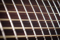 Guitar neck abstract music rosewood fret board Royalty Free Stock Photo