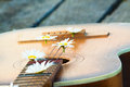 Guitar on the river dock. Royalty Free Stock Photo