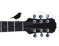 Guitar with singing bird an illustration of a headstock and neck a sitting on top Royalty Free Stock Images