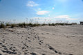 Gulf shores alabama with sand dunes Royalty Free Stock Photography