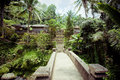 Gunung kawi temple in Bali Stock Images