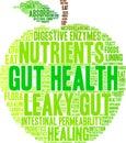 Gut Health Word Cloud Royalty Free Stock Photo