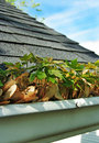 Gutter Cleanup Royalty Free Stock Images