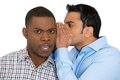 Guy whispering something annoying into man s ears closeup portrait of ear telling him secret and disturbing shocked surprised Stock Images