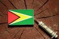 Guyana flag on a stump with syringe injecting money Royalty Free Stock Photo