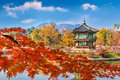 Gyeongbokgung Palace and Soft focus of Maple tree in autumn,Kore Royalty Free Stock Photo