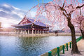 Gyeongbokgung palace in spring South Korea. Royalty Free Stock Photo