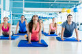 Gym people in a yoga class group of at the Royalty Free Stock Images