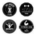 Gym seals over white background vector illustartion Royalty Free Stock Images