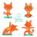 Gymnastics and Health. Set Cartoon Funny Cats Icons Doing Yoga Position. Cartoon Meditation Vector. Yoga Pose Vector.